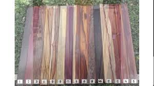 Macdonald Hardwood by Exotic Hardwood Lumber Attractive Exotic Hardwood Lumber 1