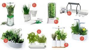 plante aromatique cuisine les jardins aromatiques d intérieur