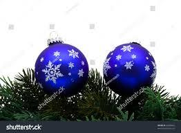 tree limb blue glass stock photo 20600665