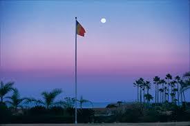 Flag With Tree And Moon Photo Essay Moon Over Miyazaki Daisaku Ikeda Website