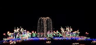 Bellevue Botanical Garden Lights Holiday Events Around Seattle Windermere Mercer Island