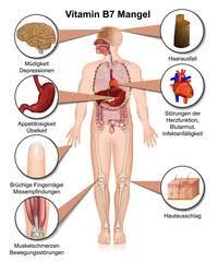 immunschwäche symptome bilder und suchen immunschwäche