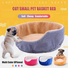 small pet beds cute home pet cat bed small dog beds teacup bichon puppy kitten