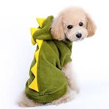 9 adorable diy pet costume ideas for halloween the buzz digger