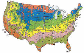 United States Atlas Map Online by Edible Landscaping Plant Sale Buy Plants Online From Our Garden