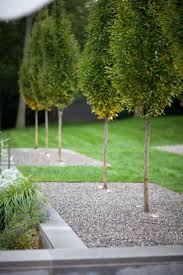 Landscape Garden Ideas Small Gardens by 40 Best Landscapes Perry Guillot Images On Pinterest Garden