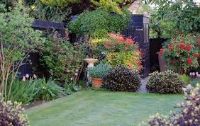 Back Garden Ideas Back Garden Ideas Cox Garden Designs