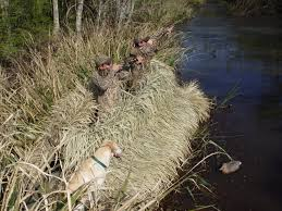 Floating Duck Blinds Photos Grass Blinds Go Devil Manufacturers