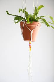 Simple Macrame Plant Hanger - diy macrame plant hanger hgtv
