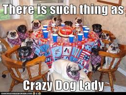 Crazy Dog Lady Meme - there is such thing as crazy dog lady i has a hotdog dog