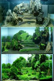 decoration for your aquarium 17 ideas let us inspire you