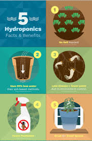 1927 best hydroponics and aquaponics images on pinterest