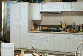 Kitchen Cabinets Door Styles White Kitchen Cabinets Ice Shaker Door Style Are In And Decor For