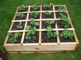 raised bed gardens home outdoor decoration