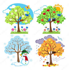 four seasons trees clipart and vector with spring summer fall