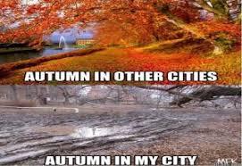 Autumn Memes - 25 funny af fall memes wow gallery ebaum s world
