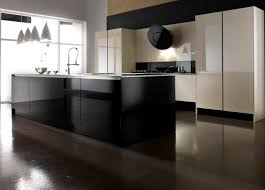 Lacquer Kitchen Cabinets by Kitchen Cabinet Lacquer Infurnia Personalizing Furniture