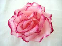 paper roses crepe paper roses katy elliott