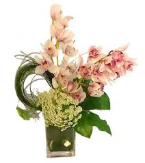 Orchid Flower Arrangements Orchid Collection Houston River Oaks Flower House Orchid Delivery