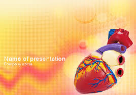 powerpoint templates free download heart heart model medical ppt template download powerpoint templates