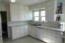 White Kitchen Cabinet Hardware by Door Hinges Kitchen Cabinets Cabinet Hinges Oak With Black