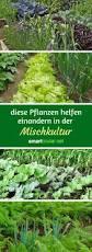 G Stige Esszimmer Komplett Maulwurf Im Garten Loswerden At Beste Von Wohnideen Blog