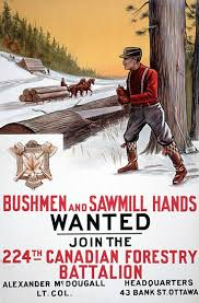 36 best chain saws images on pinterest chainsaw lumberjacks and
