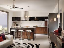 title how traditional is the u201ctraditional kitchen u201d lighting