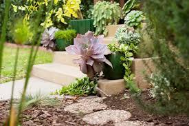 The Urban Garden Grow Like A Pro Tips For An Urban Garden Tech Life Samsung