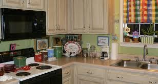 Best White Paint For Kitchen Cabinets by Well Under Cabinet Storage Shelf Tags Kitchen Cabinet Storage