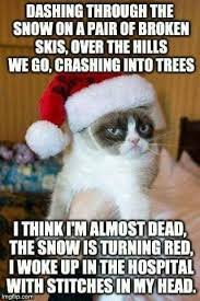 Grump Cat Meme Generator - 176 best grumpycat images on pinterest funny stuff grumpy cat and
