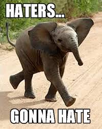 Elephant Meme - roll tide roll ツ pinterest roll tide raising and fans