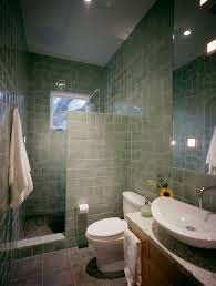 Doorless Shower For Small Bathroom Bathroom Doorless Shower For Small Bathroom Design Clean And