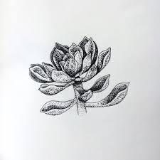 succulent pointillism by elzabzln on deviantart