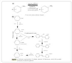 highly selective catalytic reduction of nitroarenes over
