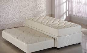daybed fun trundle bed ikea daybeds full size riser picture with