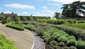 katherine roper landscape u0026 garden design garden u0026 landscape