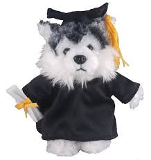 dog graduation cap and gown with me plush husky 8 with personalized black graduation