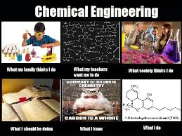 Chemical Engineering Meme - image 255286 what people think i do what i really do know