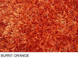 Modern Orange Rugs by Orange Shag Area Rug Rugs Ideas