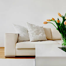Upholstery Cleaning Gold Coast Lounge Cleaning Specialists On The Gold Coast