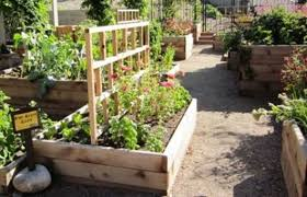 cool raised bed gardening ideas for small spaces u2014 jbeedesigns