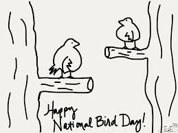 national bird day pictures and images page 2