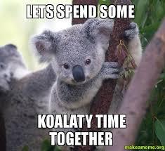 Meme Generator Koala - lets spend some koalaty time together make a meme