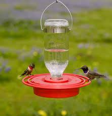 Jewel Box Window Hummingbird Feeder Duncraft Com Best 1 Hummingbird Feeder 8 Oz