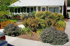 Front Yard Landscaping Ideas No Grass - astonishing front yard landscaping no grass 11 about remodel