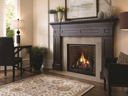 gas fireplace inserts cost u2013 whatifisland com