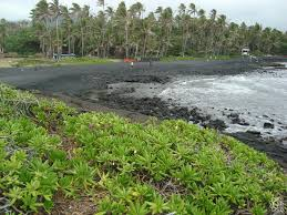punalu u0027u black sand beach park in naalehu big island hawaii