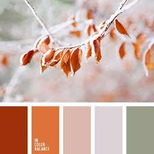 Autumn Color Schemes 63 Best Autumn Colors Images On Pinterest Colors Color Balance
