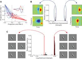 inferring nonlinear neuronal computation based on physiologically